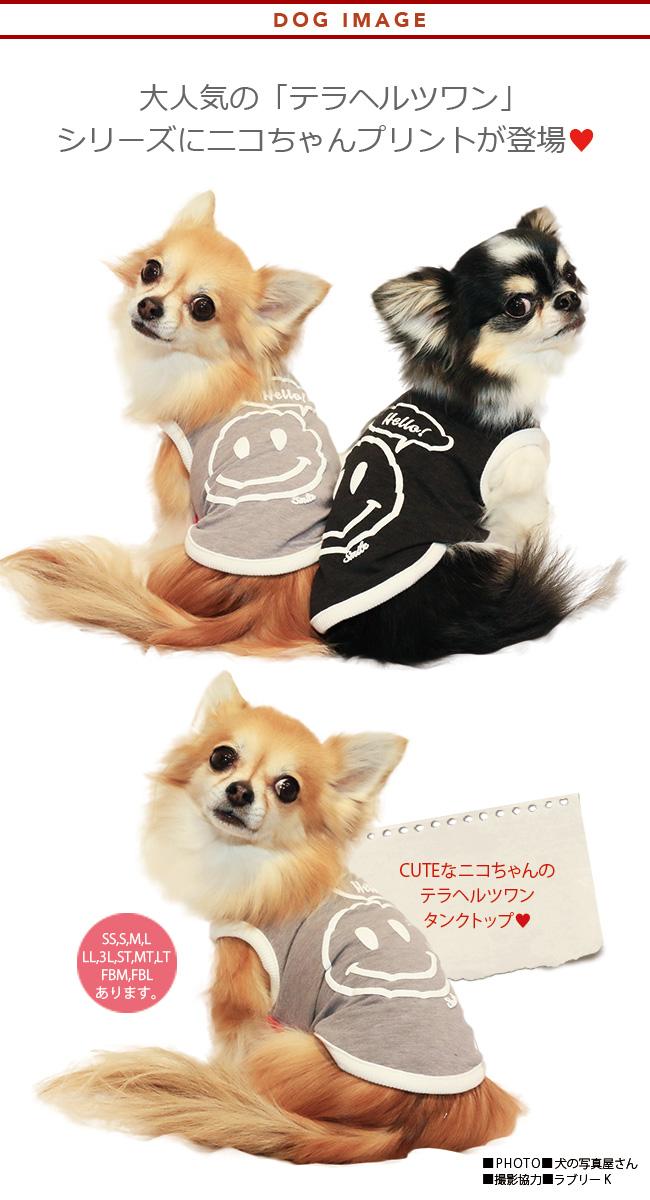 2019クークチュール春物新作 テラヘルツワン ニコタンク(2色)12230[犬服]