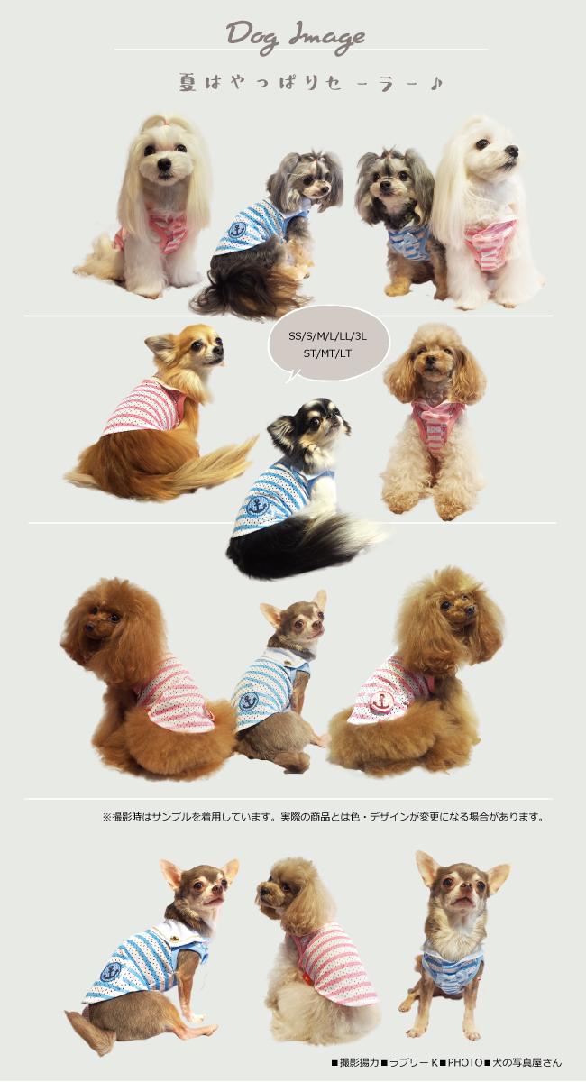2020夏物新作スーパークール×クール セーラータンク(2色)12300[犬服]